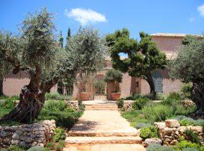 Harmonisch eingefügt in südlichen Gefilden: Antike Eiche und mehr … || Blick vom Garten zum Eingang in den Patio