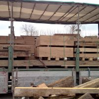 Altholz für das Domrömer-Projekt in Frankfurt