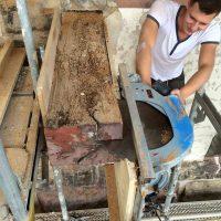 Das morsche Eichenholz wird mittels einer Säge vom intakten Holz entfernt.