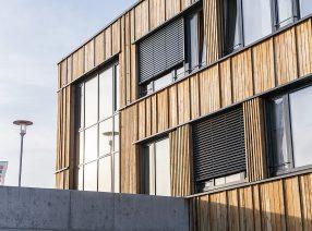 Schnittholz aus alter Eiche zur Fassadenverkleidung der Stadtwerke Neustadt (Holstein)